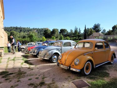 strictly vintage volkswagen meeting